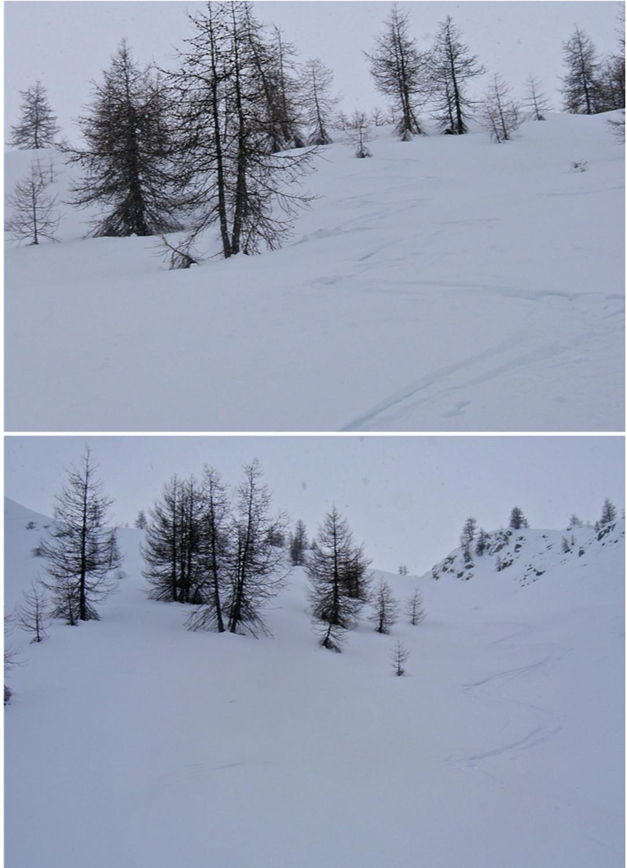Très bonne neige en dessous du Collet 2147m.