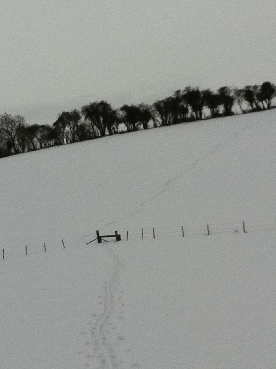 Skiing in the North Downs 4