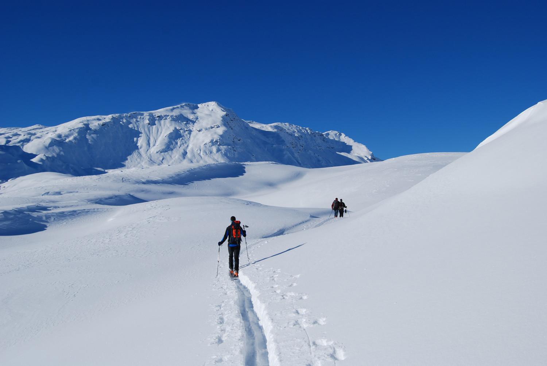 Salita lungo il Pian dei Cavalli con il Monte Bardan versante E.