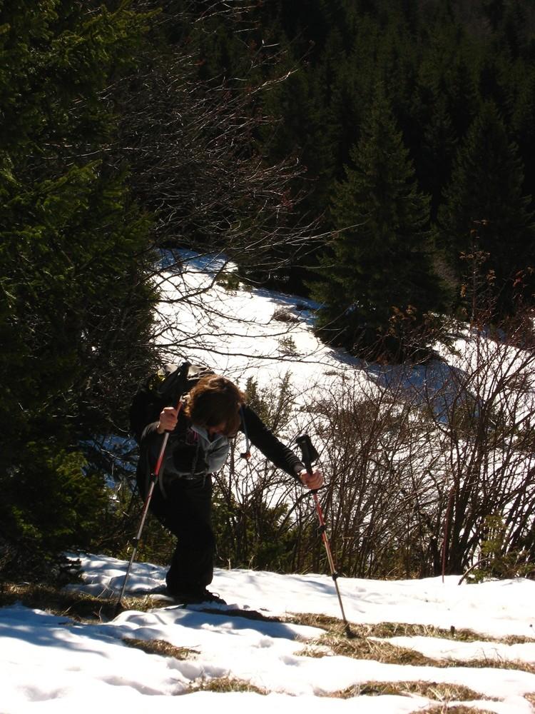 Alpinisme herbeux