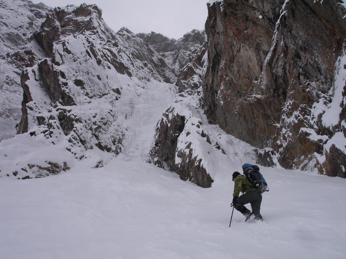 Cascade Grison L1