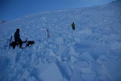 Vue générale de l'avalanche depuis le bas.