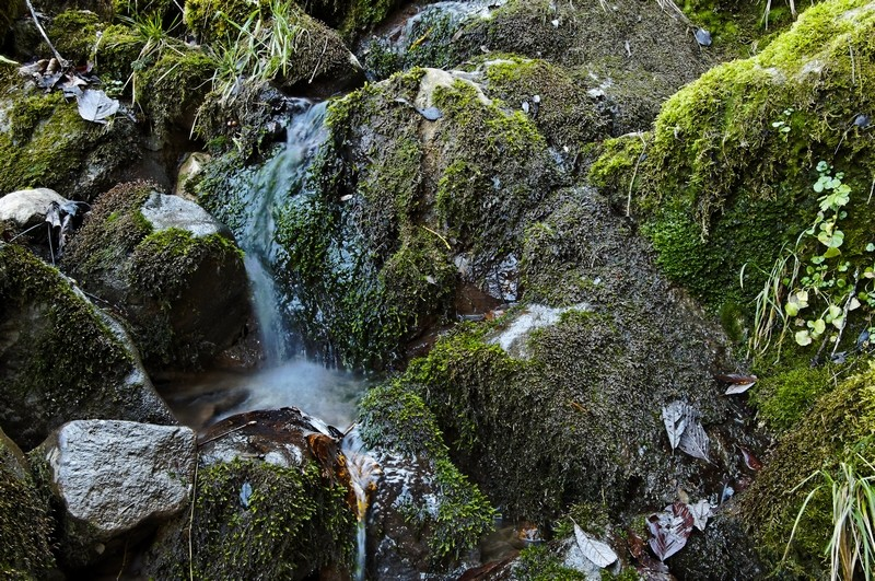 Essai de pose longue en ruisseau