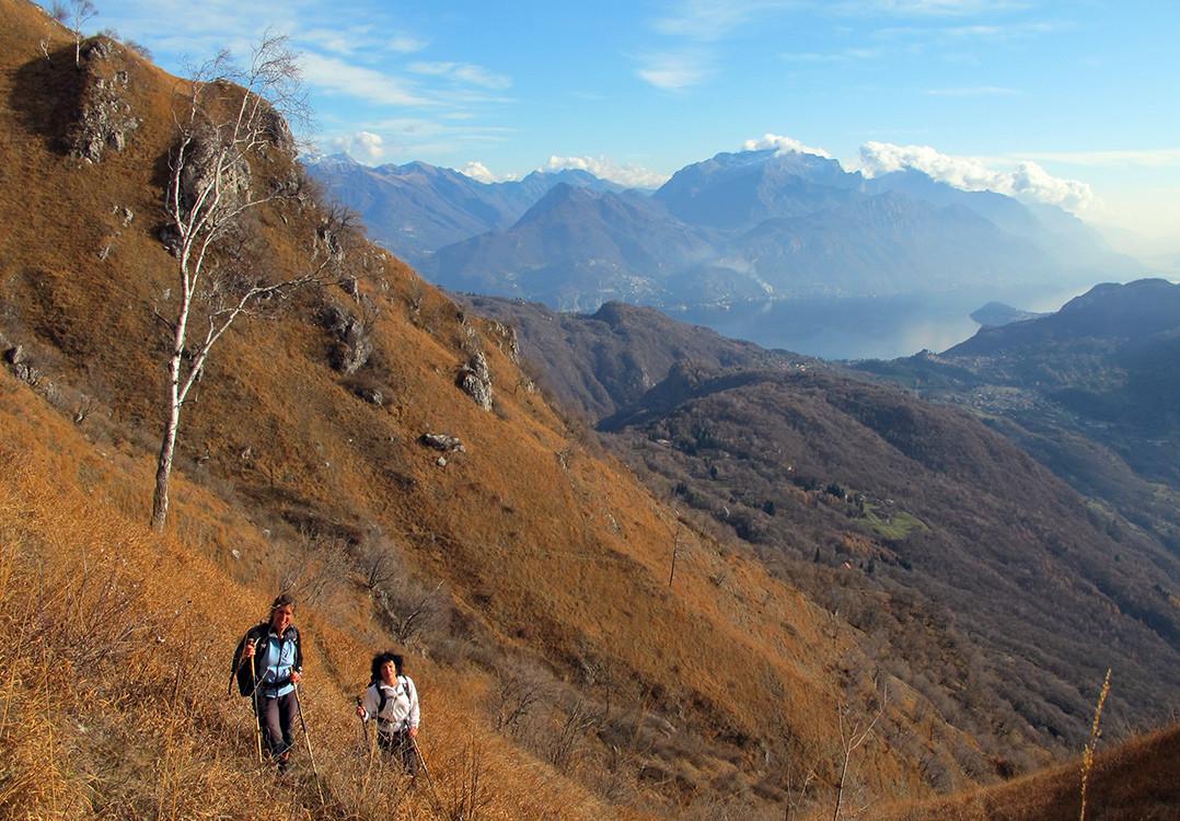 "salendo sul ""paiun"" del versante meridionale del Pidaggia..."