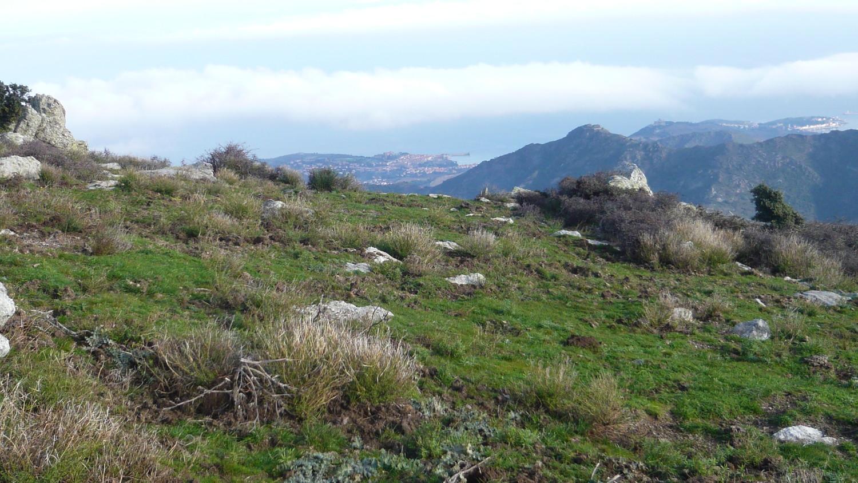 Le sommet est proche, vue sur Collioure
