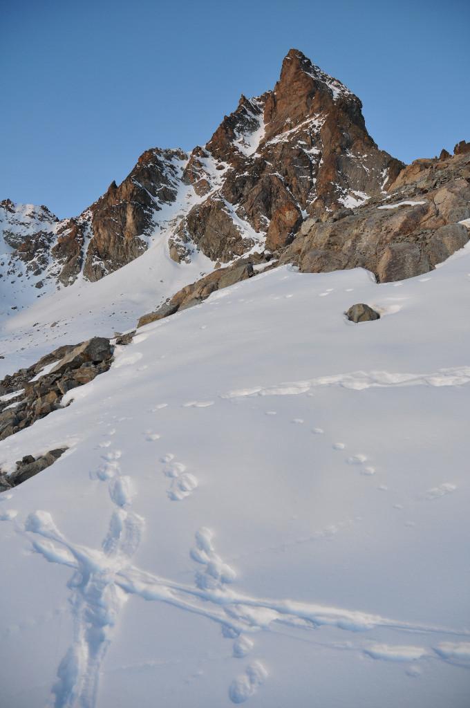 Keschnadel : the NE ridge is on the right. End Nov. 2011