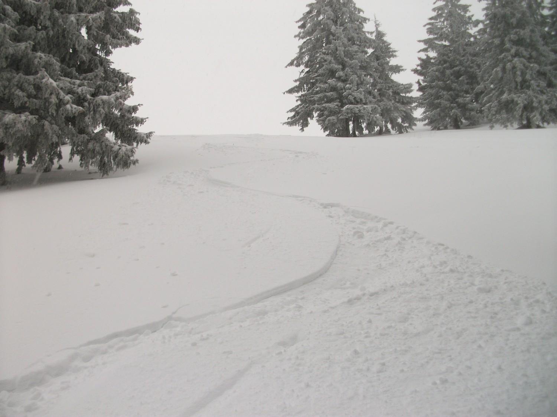 bien agréable à skier dans ce coin