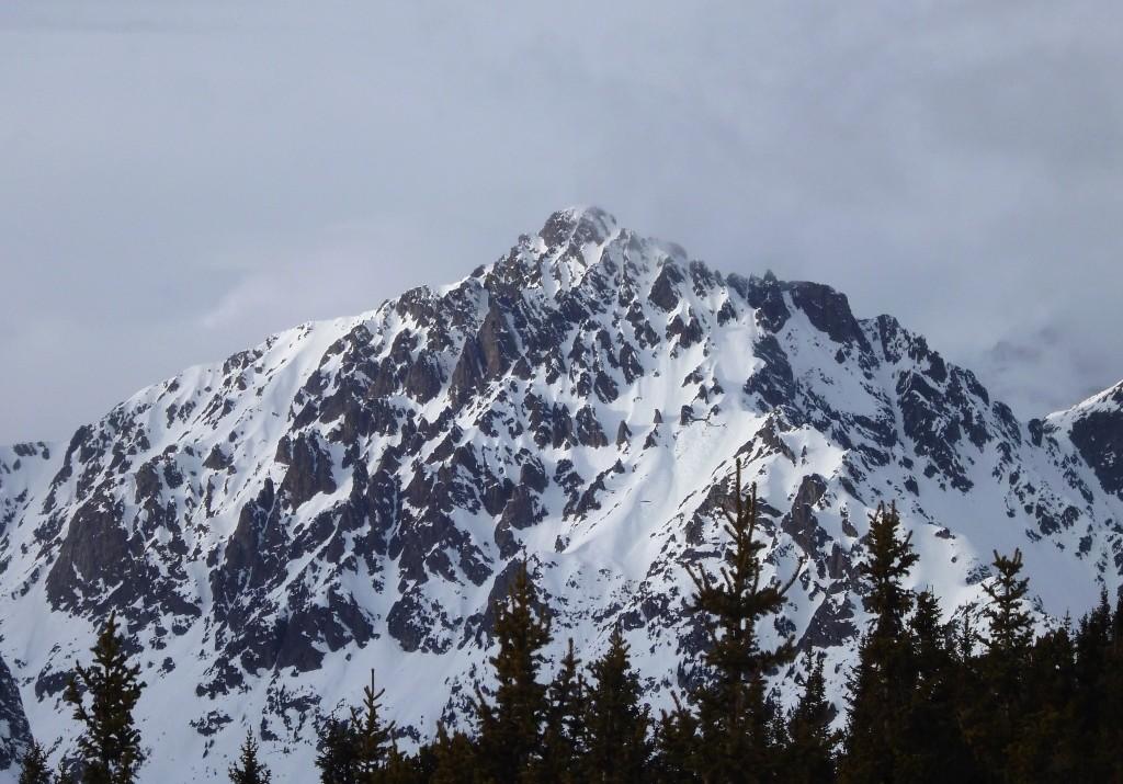 Luisin, versant S vu du Mt de l'Arpille