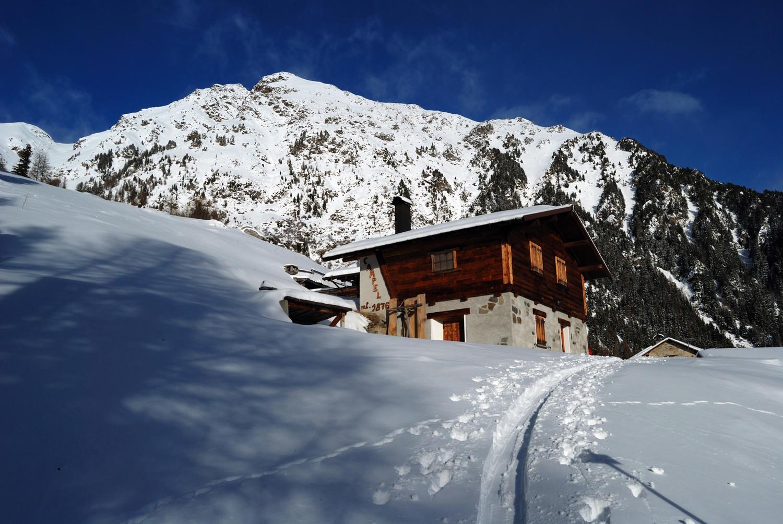 La baita a Campel 1876 m con sullo sfondo la Cima Grava 2936 m