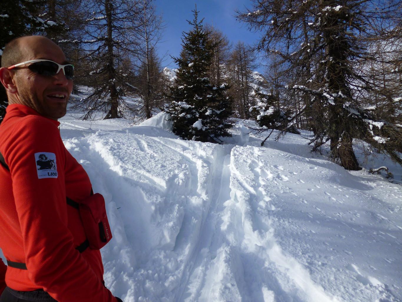 Ottima neve nel bosco rado salendo al Munt da Campasc
