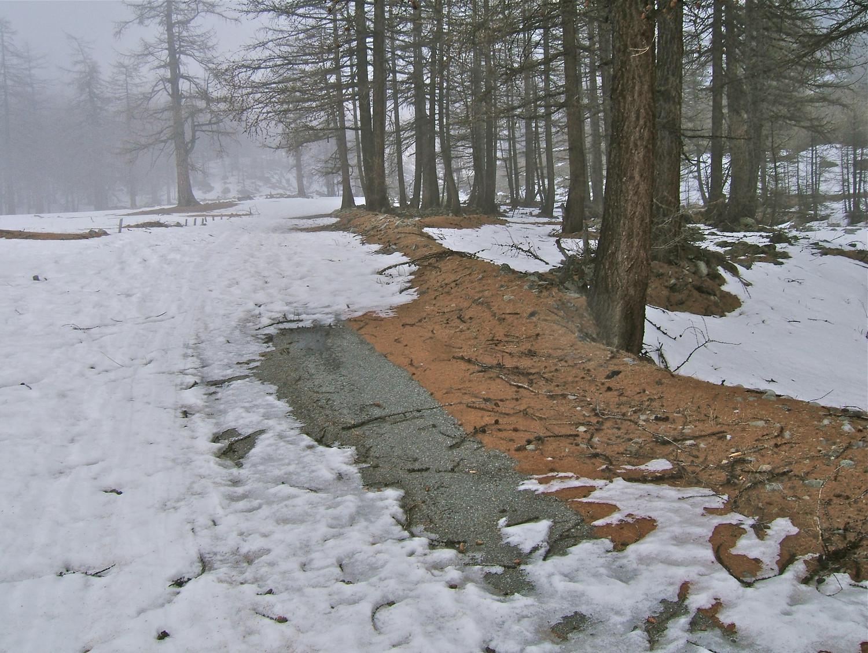 Plateau de Sestrière.