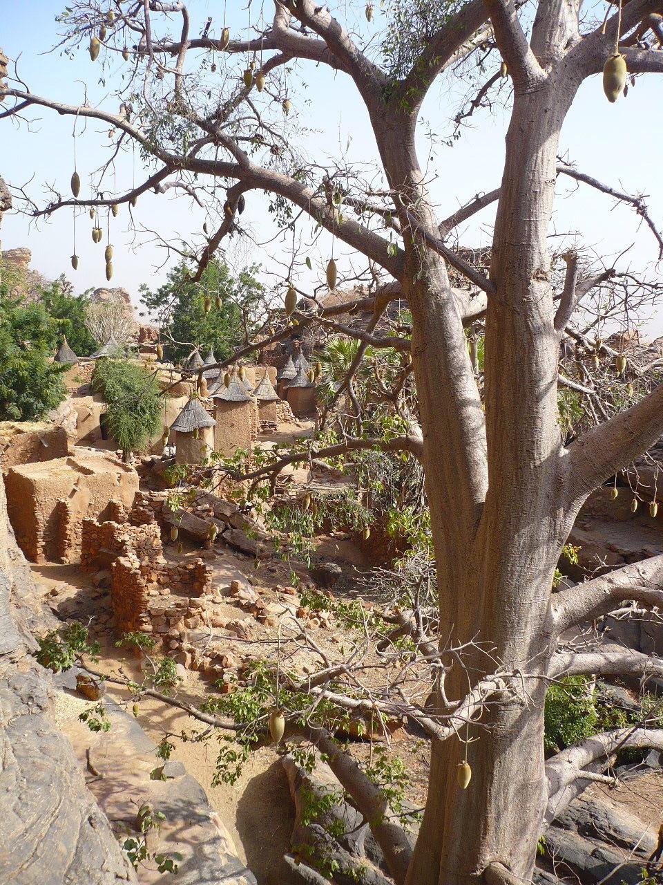 village perché et baobabs vers Arou