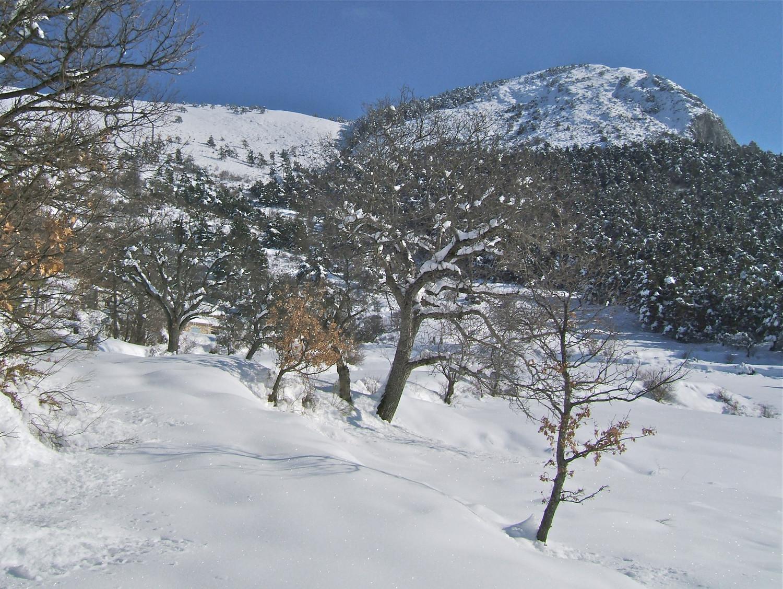 Vers la borne 115 le vallon menant au Collet du Gros Bène.