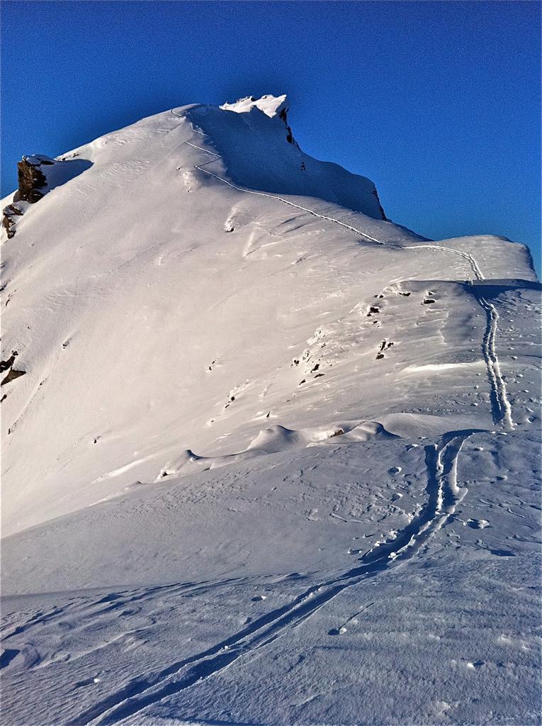 Arête sommitale un peu après le sommet d'été 3139, Sasseneire, fév. 2012
