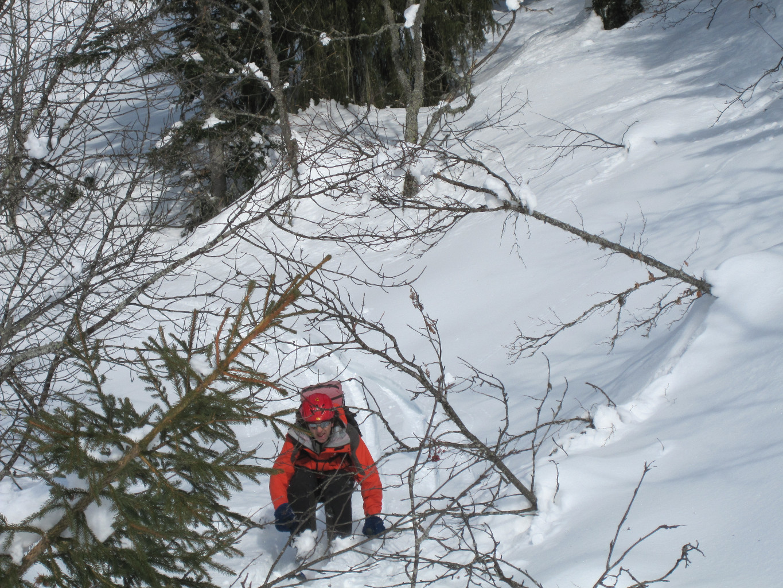 Hubert, les branches dans la tronche, ça fait mal hein ??