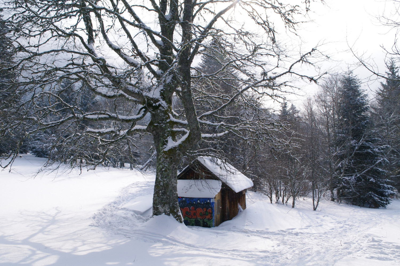 Cabane de Girieux