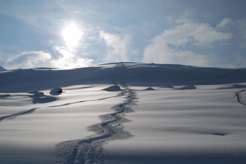 Discesa su bella neve dal Piz Colm/Cuolm 2415m