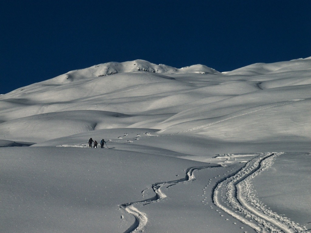 Hofer Alp