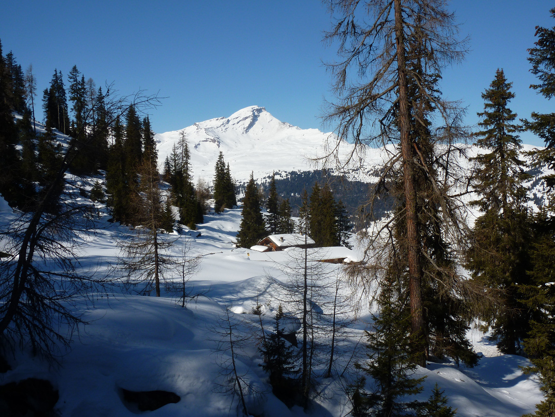 Vista dell'alpe Tischatscha sullo sfondo il Beverin, salendo al Piz Curver