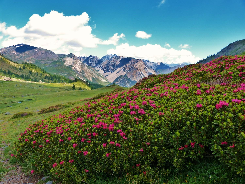 Descnete vers Nevache - Hautes Alpes