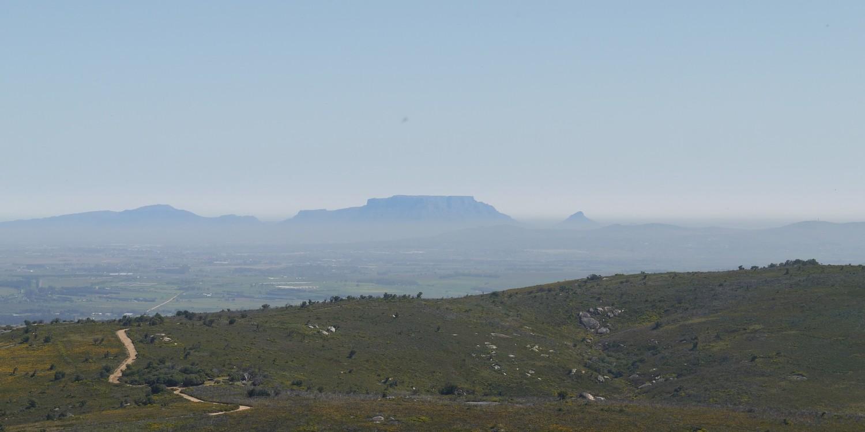 Vue en direction de Cape town: Table mountain et Lion's head