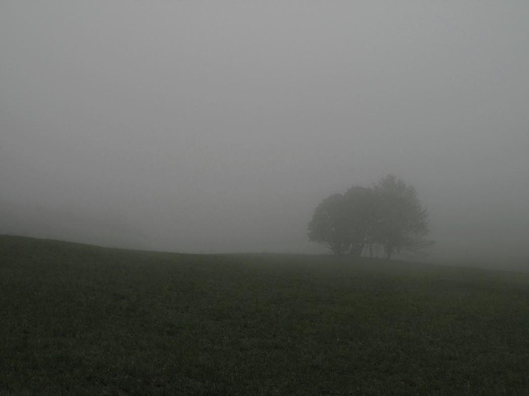 A la Conversaria, dans le brouillard