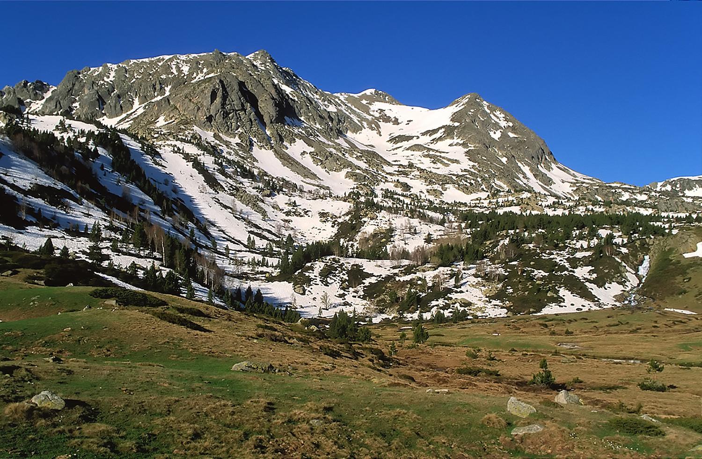 Pic de Camp Colomer