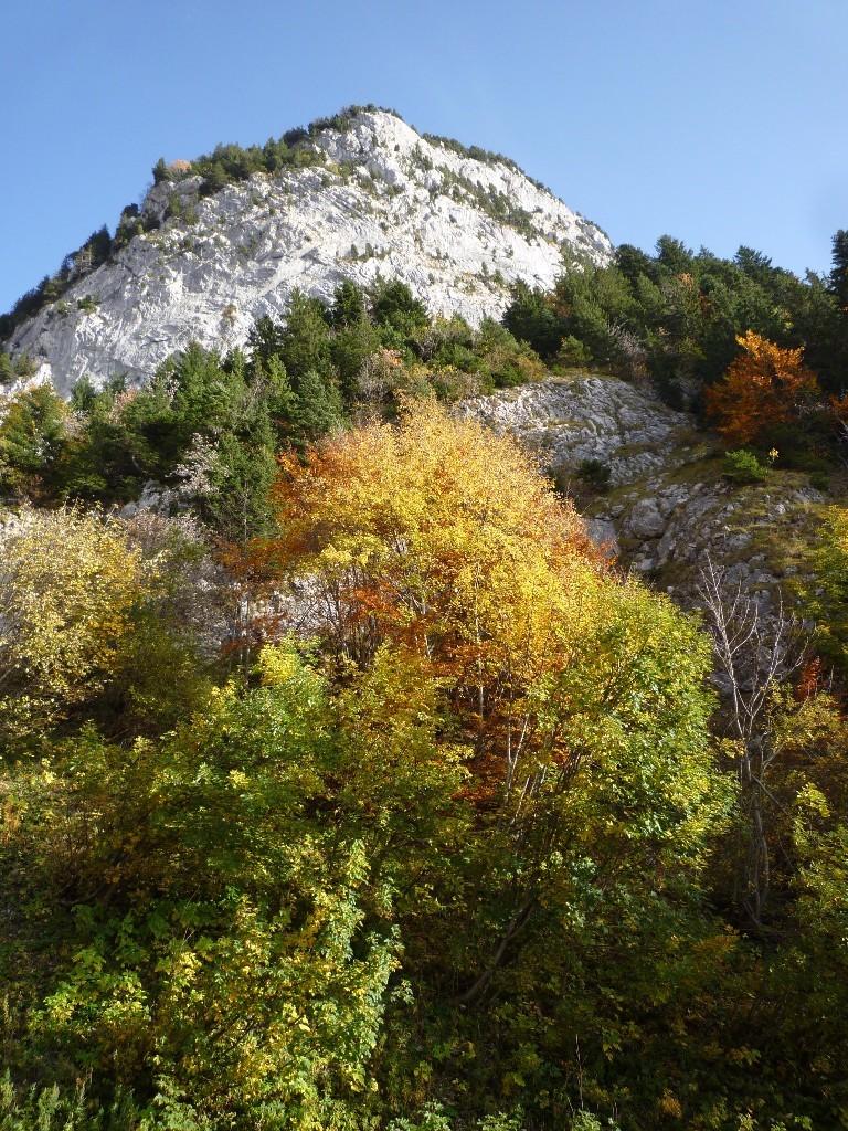 L'automne flambe sous la Beccaz