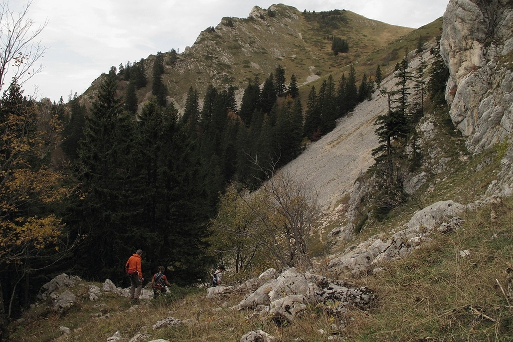 Entre le Habert de Bovinant et le Pas du Loup