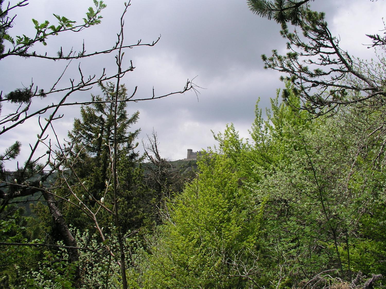 Vue sur l'observatoire météorologique