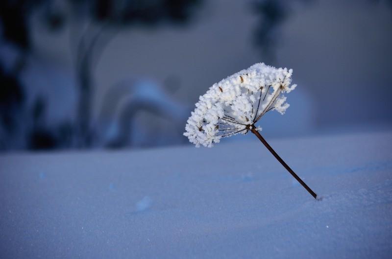 En fin de journée, la neige n'a guère fondu.