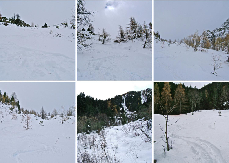 Du bon ski.