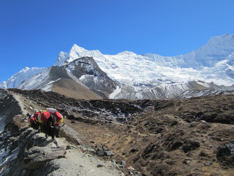 départ vers l'Isalnd peak BC depuis Chhukung