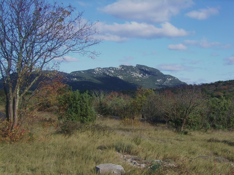 Le Pic Saint-Loup, vu depuis Cazevieille