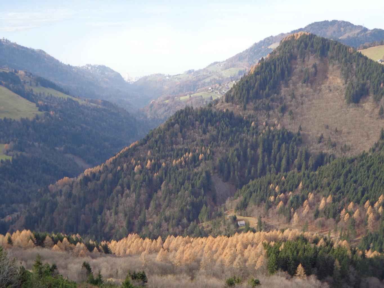 Couleurs d'automne sur les hauts de Montreux