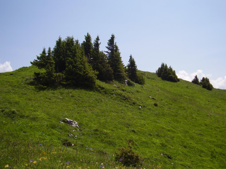 Proche du sommet de la pointe d'Ireuse