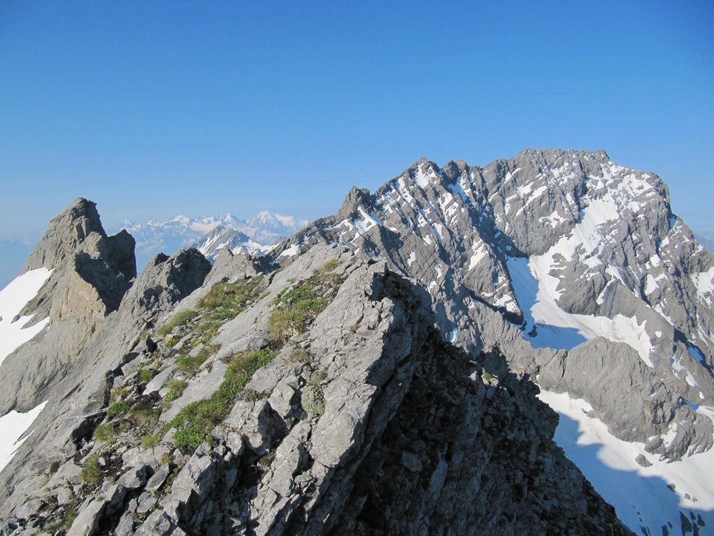 Arête Vierge depuis sommet et Grd Muveran