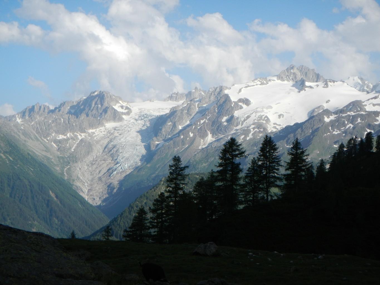 Glacier du Trient et Aiguilles du Tour