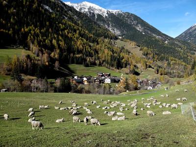 Issert - Val Ferret
