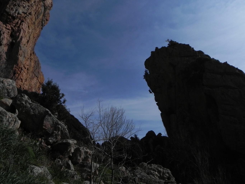 Gozzi - le profil de Saga Corsica (6c)