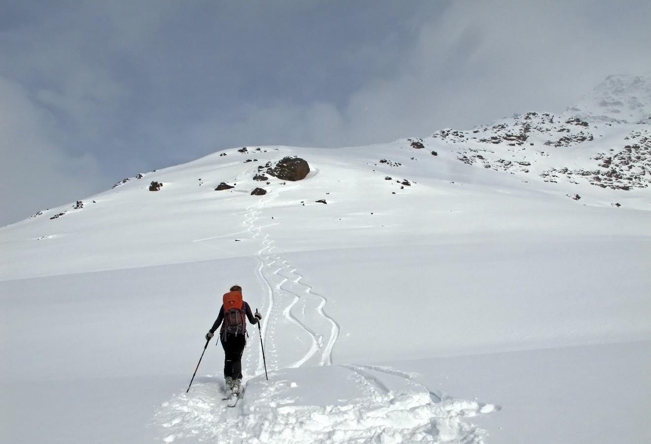 Dosso Tresero; ri-salita alla quota 2603 m...