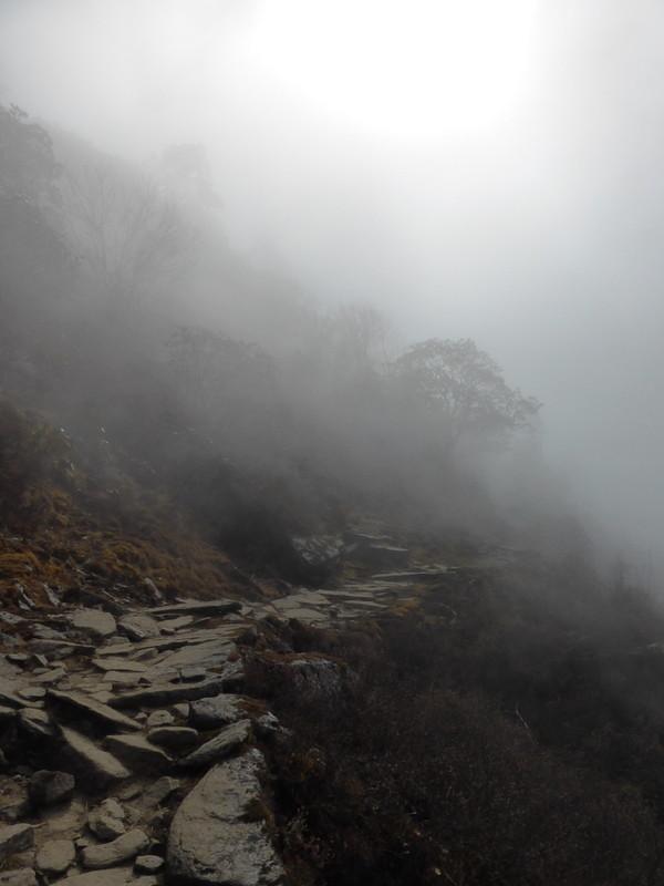 Superbe ambiance un peu avant Thadepati Pass.