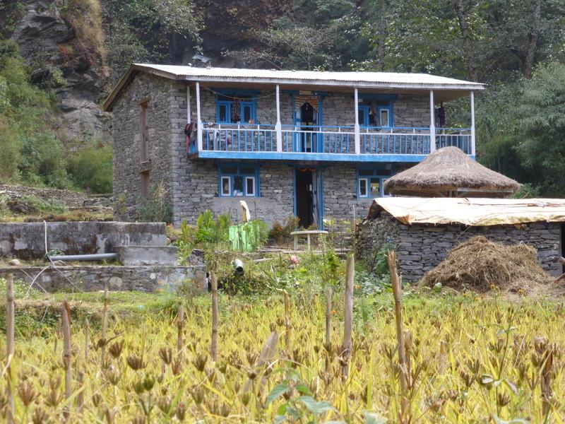Lodgeau bord de la Trishuli Khola.