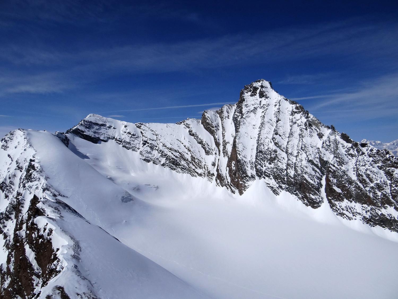 Grivola face SE , la Blanche, la Noire et le glacier de Trayo