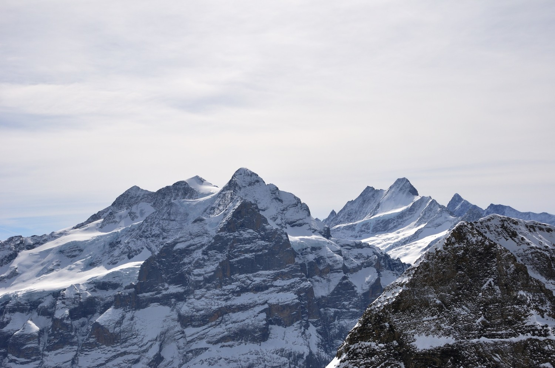 Wetterhorn - Schreckhorn - Finsteraarhorn, vus de la montée au Wildgärst