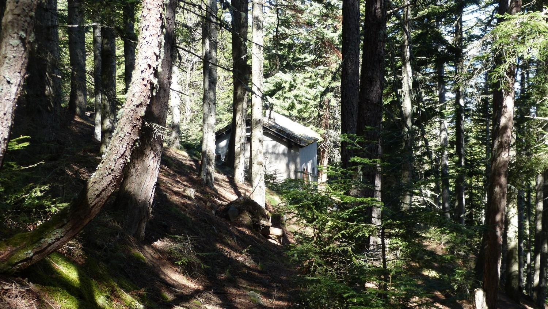 Maison forestière de Founguère