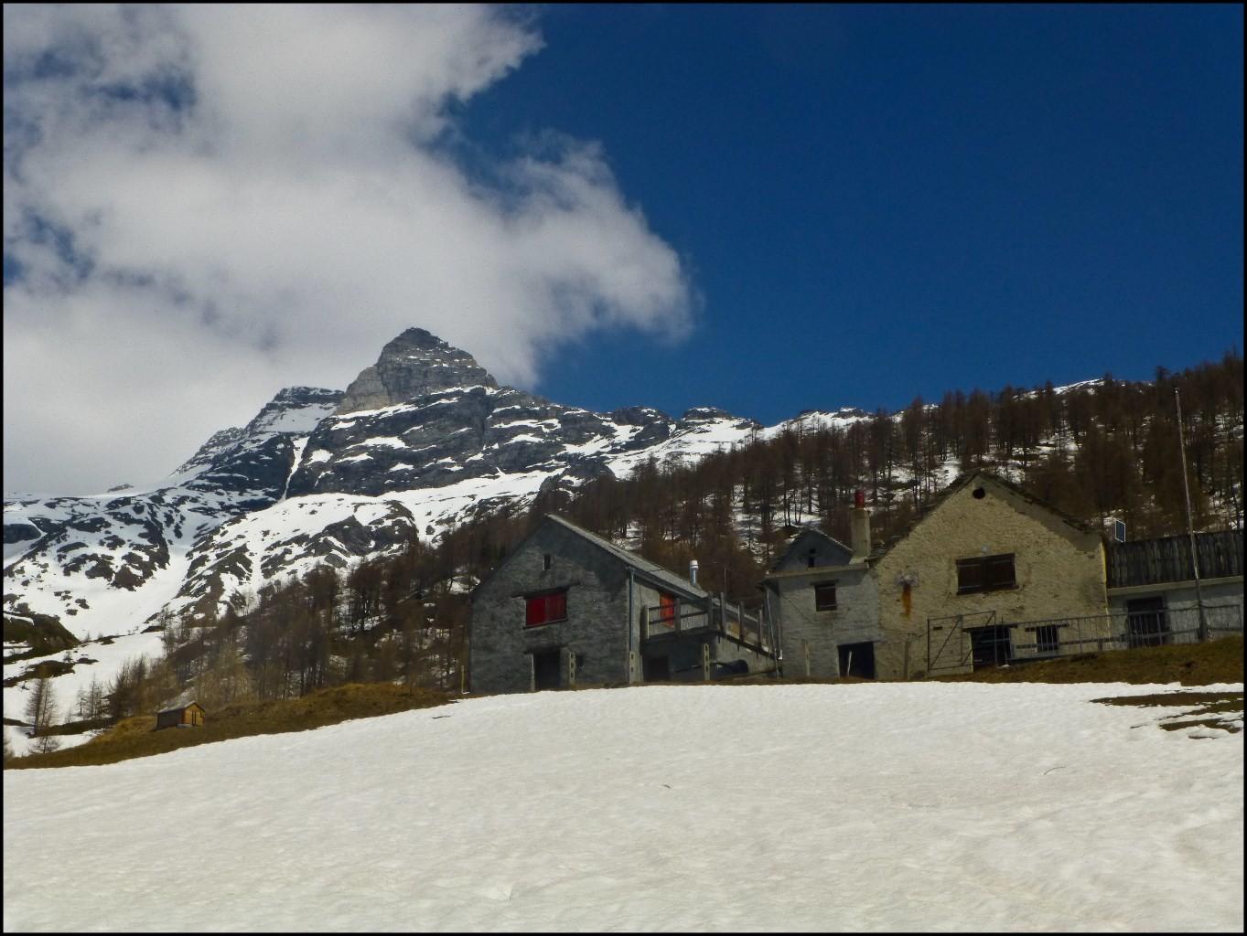 Alpe Homatta