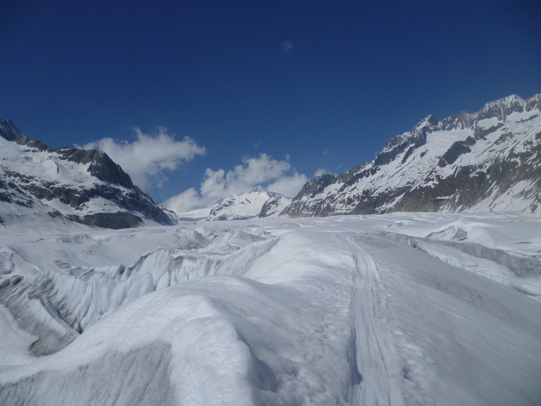 Au début de la remontée du glacier d'Aletsch