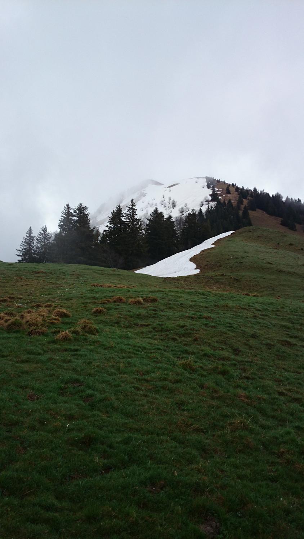 Vue sur le sommet et son versant N depuis Plan Meulet