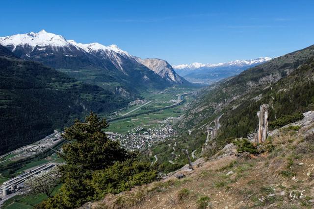 La vallée du Rhône depuis la montée verts Tatz.